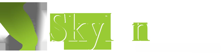Skylan Architecture